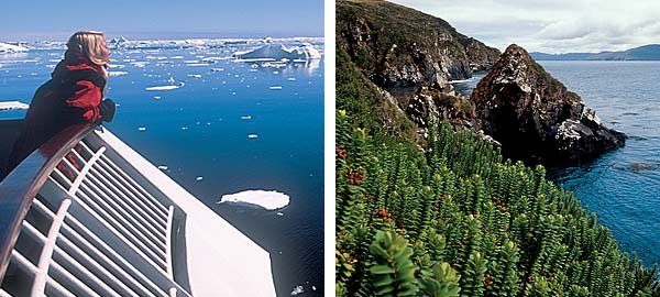 Antarctic Cruises & Tours - ice fields, sub-Antarctic islands